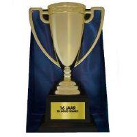 Beker trofee Gold Cup 16 jaar en goud waard aanbieding