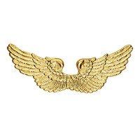 Gouden engelen vleugels