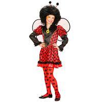 Lieveheersbeestje kleine insect jurk kind