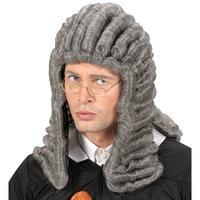 Pruik rechter en advocaat volwassen grijs