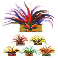 Veren kroon Rio the Janeiro volwassen