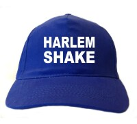Harlem shake pet