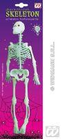 Rubber skelet 33cm lichtgevend in het donker