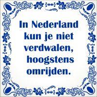 Spreukentegel In Nederland kun je niet verdwalen hoogstens omrijden