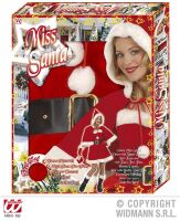profesionele  kerstvrouw outfit miss santa