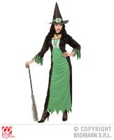 Groene heksenjurk the green witch volwassen