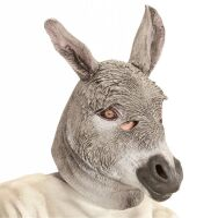 Balkende ezel masker volwassen