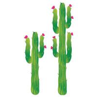 Cactus set decoratie karton